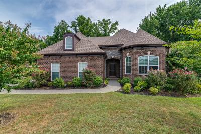 Hendersonville Single Family Home Under Contract - Showing: 102 Beacon Light Cv