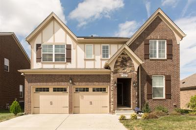 Mount Juliet TN Single Family Home For Sale: $409,900