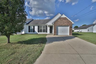 Smyrna Single Family Home For Sale: 503 McKean Dr
