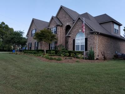 Rutherford County Single Family Home For Sale: 227 Camilla Ln