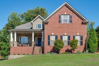 Hendersonville Single Family Home For Sale: 1073 Mansker Farms Blvd