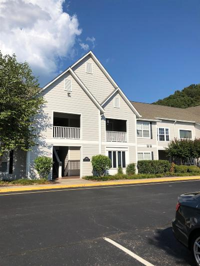 Cheatham County Condo/Townhouse Under Contract - Showing: 1363 Highway 12 South Bldg B Un #224