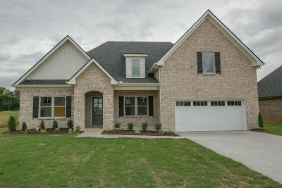 Murfreesboro Single Family Home For Sale: 1119 General Marshall-Lot 238