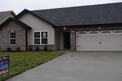 Clarksville TN Single Family Home For Sale: $182,900