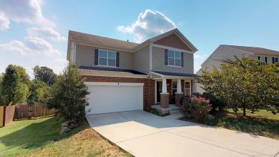 Nashville Single Family Home For Sale: 748 Wolfeboro Ln