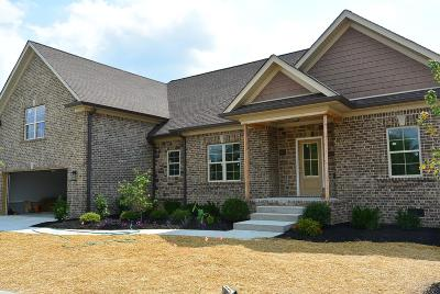 Old Hickory Single Family Home For Sale: 709 River Landing Way