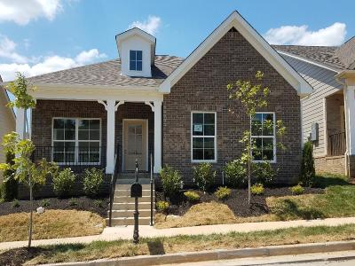 Nolensville Single Family Home Under Contract - Showing: 4066 Liberton Way; Lot 138