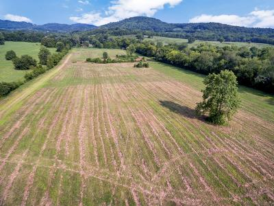 Residential Lots & Land For Sale: 205 Mutton Hollow