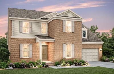 Mount Juliet Single Family Home Under Contract - Showing: 313 Union Pier Drive Lot 70