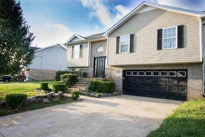 Clarksville Single Family Home For Sale: 985 Silty Dr