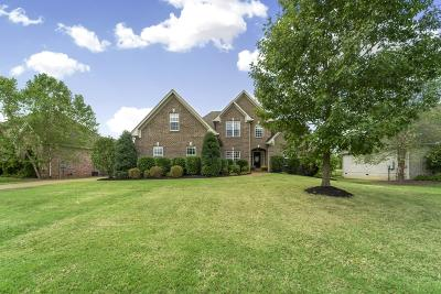 Spring Hill Single Family Home For Sale: 5012 Paddy Trace