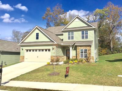 Spring Hill  Single Family Home For Sale: 1036 Keeneland Dr