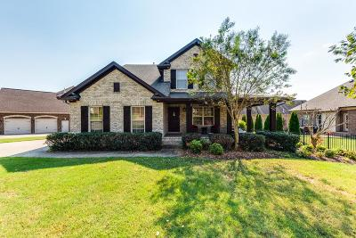 Hendersonville Single Family Home For Sale: 1004 Raspberry Valley Ct