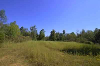Nunnelly Residential Lots & Land Under Contract - Showing: 2901 Campground Hollow Rd