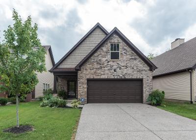 Hendersonville Single Family Home Under Contract - Not Showing: 249 Donna Dr