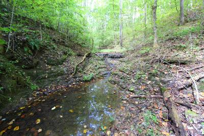 Summertown Residential Lots & Land For Sale: 1424 Anderson Creek Rd