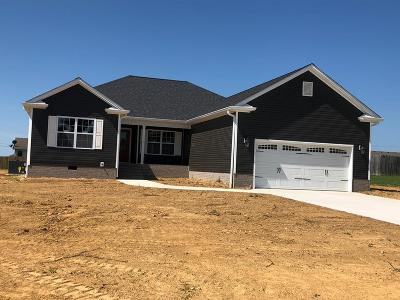 Christian County Single Family Home For Sale: 157 Valley Green