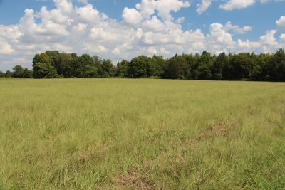 Robertson County Residential Lots & Land Under Contract - Showing: Highway 49e