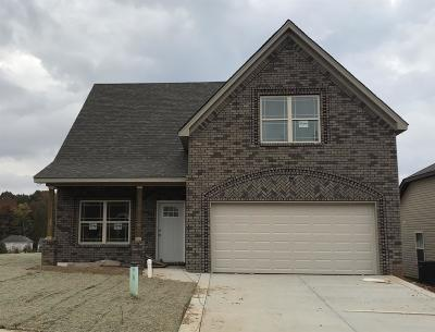 Springfield Single Family Home For Sale: 460 Golf Club Lane