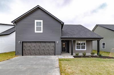 Clarksville Single Family Home For Sale: 1147 Eagles Bluff Dr