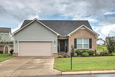 Spring Hill Single Family Home For Sale: 2017 Cobblestone Dr