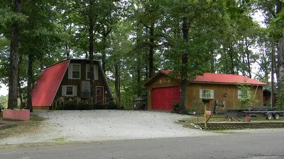 Lobelville Single Family Home For Sale: 253 Camp Nix Rd