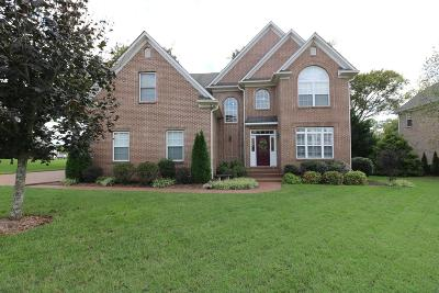 Spring Hill Single Family Home For Sale: 1089 Auldridge Dr