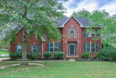 Bon Aqua, Burns, Charlotte, Cumberland Furnace, Dickson, Lyles, Vanleer, White Bluff Single Family Home For Sale: 1256 Camp Ravine Rd
