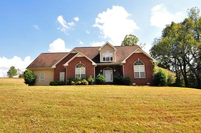 Clarksville Single Family Home For Sale: 950 Old Mack Rd