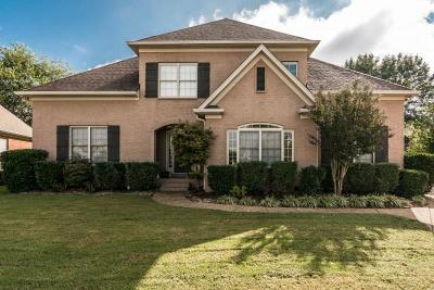Hendersonville Single Family Home For Sale: 209 Chapel Ct S