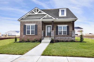 Spring Hill Single Family Home For Sale: 125 Harvest Point Blvd Lot 70a