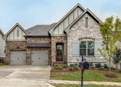 Franklin Single Family Home Under Contract - Showing: 336 River Bluff Dr