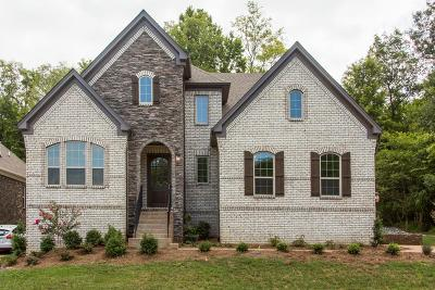 Hendersonville Single Family Home For Sale: 215 South Malayna Dr Lot 138