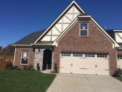 Stonebridge, Stonebridge Ph 1, 2, 3, Stonebridge Ph 11, Stonebridge Ph 17 Condo/Townhouse For Sale: 868 Meadowcrest Way #825