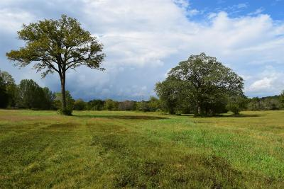 Williamson County Residential Lots & Land For Sale: 4 Murfreesboro Road