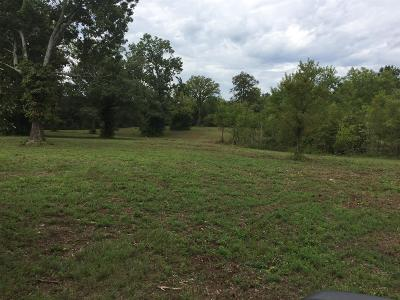 Rutherford County Residential Lots & Land For Sale: 11417 New Zion
