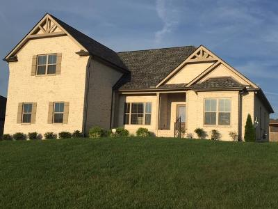 Smyrna Single Family Home For Sale: 4408 Maplestone Lane