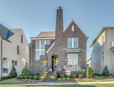 Nashville Single Family Home For Sale: 233 Meriwether Blvd