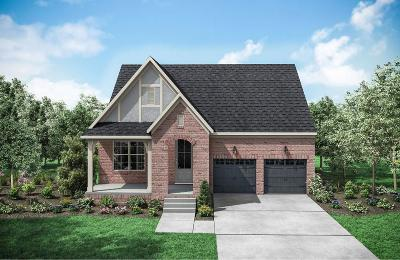 Hendersonville Single Family Home For Sale: 111 Nighthawk Rd. Lot 347