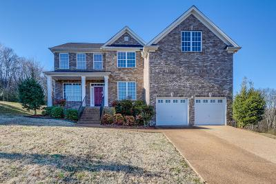 Sumner County Single Family Home For Sale: 144 Paige Park Ln