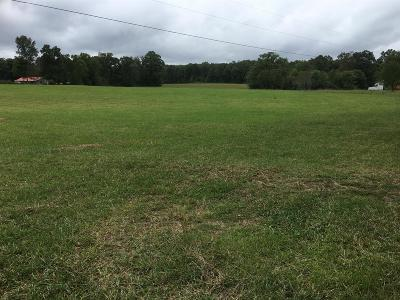 Residential Lots & Land For Sale: 720 S Stone Door Road