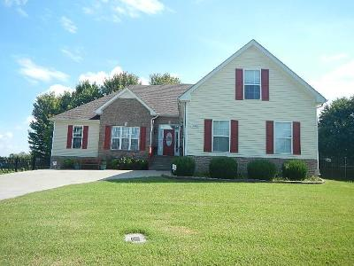 Clarksville Single Family Home For Sale: 361 Sango Rd