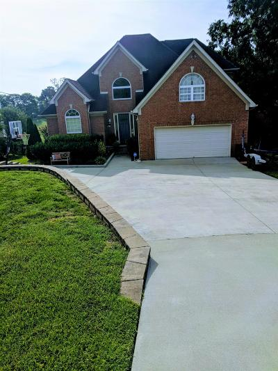 Mount Juliet Single Family Home For Sale: 341 Lakeview Cir