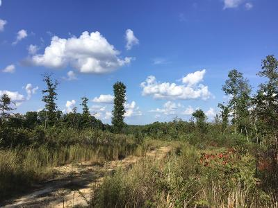 Hohenwald Residential Lots & Land Under Contract - Showing: Kimberly Rd