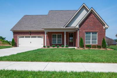 Spring Hill Single Family Home For Sale: 6087 Kidman Ln