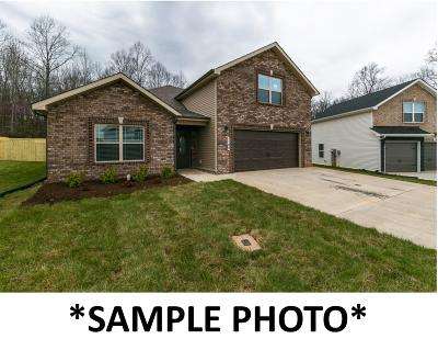 Clarksville Single Family Home For Sale: 1157 Gentry Drive (Lot 101)