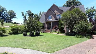 Hendersonville Single Family Home For Sale: 130 Pilot Knob Ln