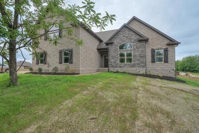 Mount Juliet Single Family Home For Sale: 7211 Couchville Pike