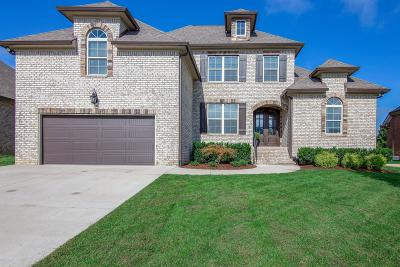 Spring Hill Single Family Home For Sale: 4171 Miles Johnson Pkwy
