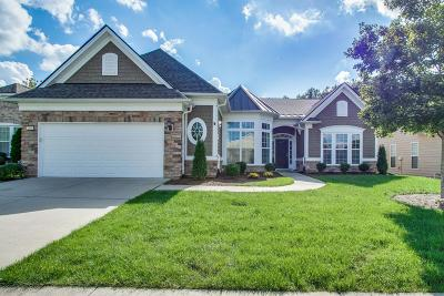 Mount Juliet Single Family Home Under Contract - Showing: 219 Citadel Dr